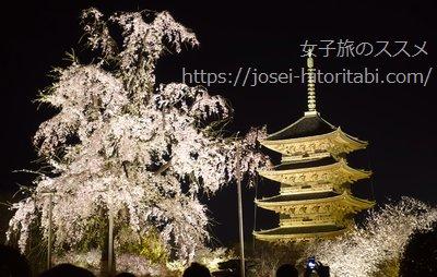東寺のライトアップ