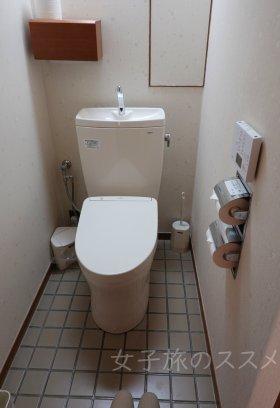 山水館 川湯みどりやのトイレ